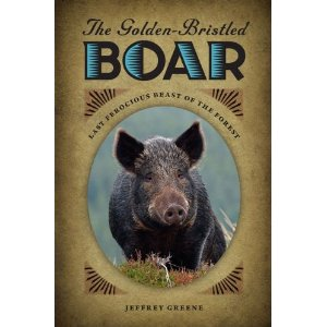Golden Bristled Boar